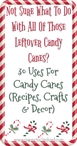 30 Uses For Leftover Candy Canes – Recipes, Crafts & Decor