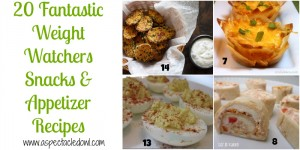20 Weight Watchers SNACKS/APPETIZERS Recipes - A Spectacled Owl