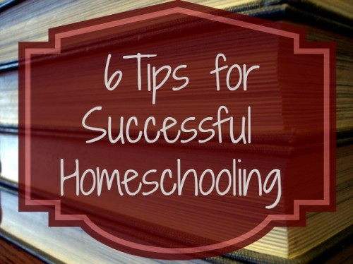 6 Tips for Successful Homeschooling