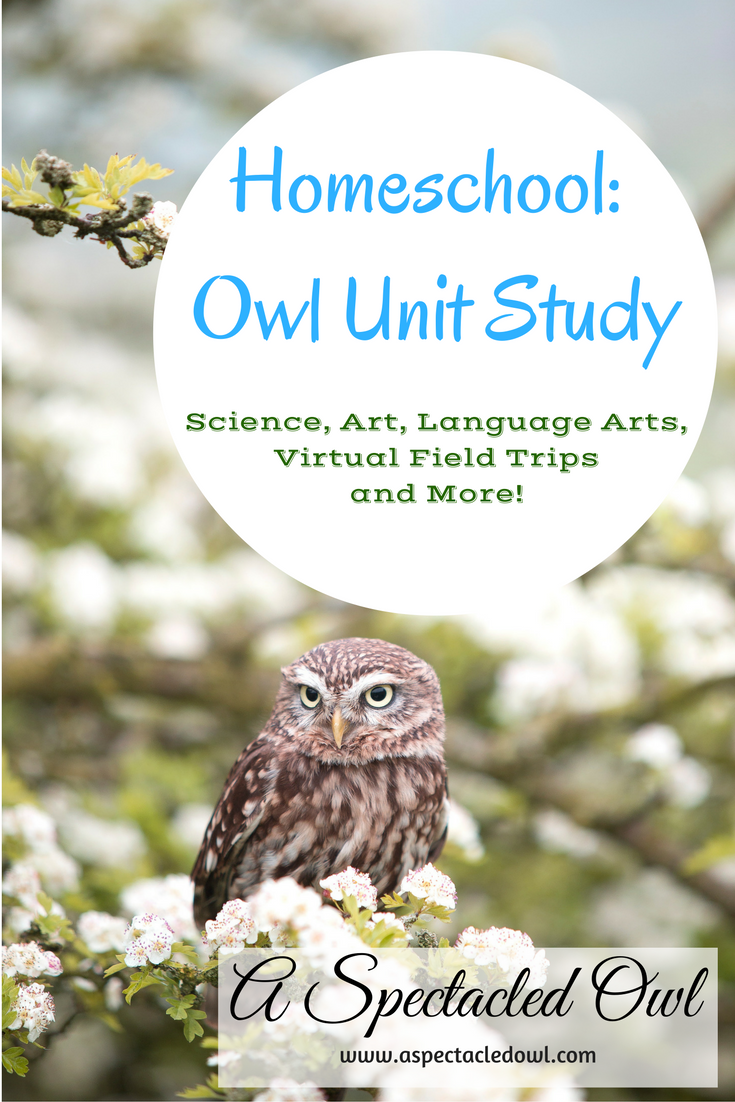Homeschool: Owl Unit Study - Owls are majestic, beautiful creatures that pretty much anyone can enjoy learning about. I love that homeschooling offers so many options, especially when it comes to Unit Studies. Use this Owl Unit Study to get the thinking train started... and let us know where it goes!