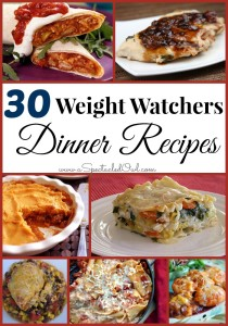 30 Weight Watchers DINNER Recipes