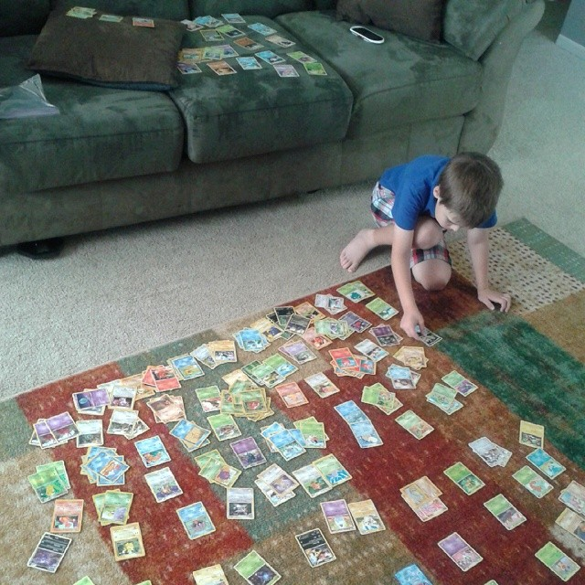 When you have a nasty cold and cough in the middle of the summer, it's best to just sort all your Pokemon cards :-)