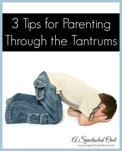3 Tips for Parenting Through the Tantrums