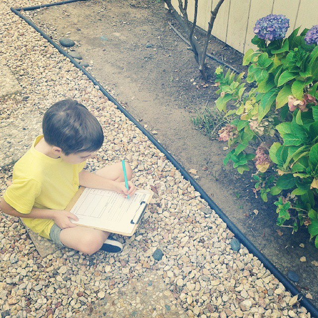 Observing plants today for school #homeschool #homeschooling #science