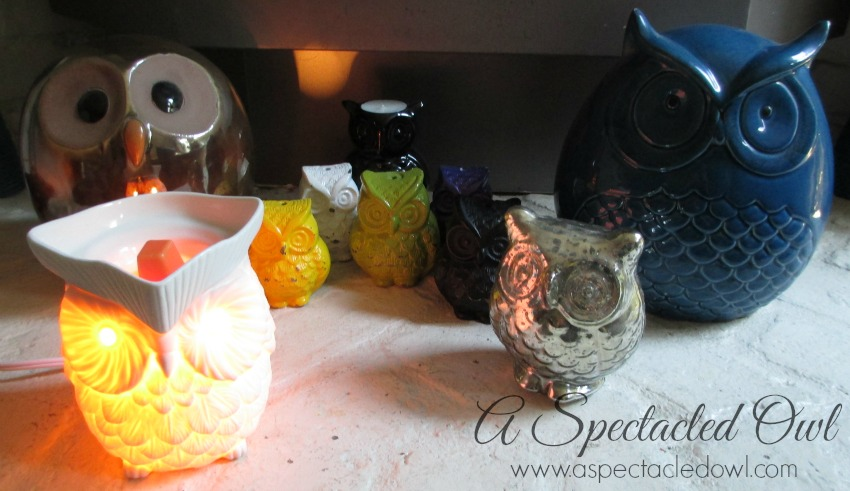 Scentsy6